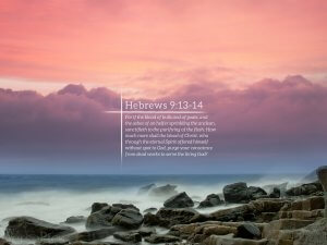 Hebrews 9:13-14 Tablet